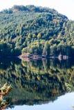 Ajardine com a floresta, as montanhas e la escoceses verdes bonitos Fotos de Stock Royalty Free