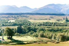 Ajardine com a floresta, as montanhas e va escoceses verdes bonitos Imagem de Stock