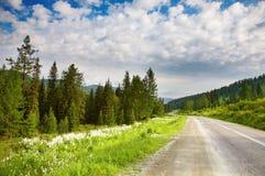 Ajardine com floresta e estrada Fotografia de Stock Royalty Free