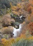 Ajardine com floresta e lago no tempo do outono spain Imagem de Stock Royalty Free