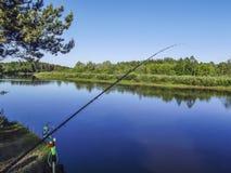 Ajardine com floresta e um rio na parte dianteira Cenário bonito Fotos de Stock