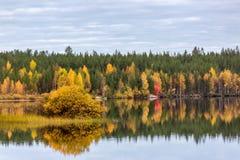 Ajardine com a floresta, o lago e reflexão coloridos do outono Foto de Stock