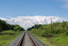 Ajardine com floresta, os céus, as nuvens e a estrada de ferro verdes Fotos de Stock