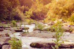 Ajardine com floresta, rio e pedras em Ucrânia Foto de Stock Royalty Free