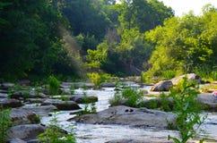 Ajardine com floresta, rio e pedras em Ucrânia Fotos de Stock