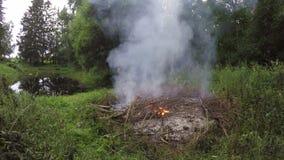 Ajardine com a fogueira que queima-se no prado pela lagoa, 4K filme