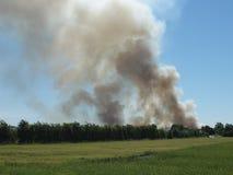 Ajardine com fumo do incêndio Imagens de Stock Royalty Free