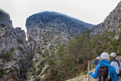 Ajardine com garganta dos montes completamente da névoa da manhã Fotografia de Stock Royalty Free