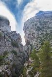 Ajardine com garganta dos montes completamente da névoa da manhã Imagens de Stock