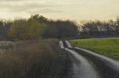 Ajardine com grama verde, estrada e nuvens Fotos de Stock Royalty Free