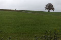 ajardine com horizonte visível em um dia nevoento de novembro com indi Fotografia de Stock Royalty Free