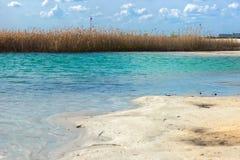 Ajardine com a ilha de lingüeta no lago de turquesa Fotos de Stock Royalty Free