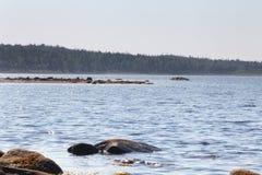 Ajardine com a imagem da praia do mar branco na ilha de Solovetsky Fotografia de Stock