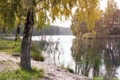Ajardine com a imagem do rio e da natureza circunvizinha Imagens de Stock Royalty Free