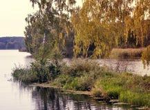 Ajardine com a imagem do rio e da natureza circunvizinha Fotografia de Stock Royalty Free