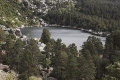 Ajardine com lago e floresta do pinho na Espanha Laguna Negra Fotografia de Stock