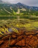 Ajardine com lago e grama verde na montanha Fotografia de Stock