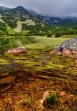Ajardine com lago e grama verde na montanha Imagens de Stock Royalty Free