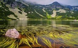 Ajardine com lago e grama verde na montanha Foto de Stock Royalty Free