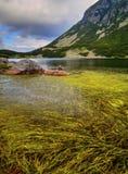 Ajardine com lago e grama verde na montanha Fotografia de Stock Royalty Free