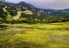 Ajardine com lago e grama verde na montanha Imagem de Stock Royalty Free