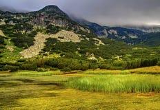 Ajardine com lago e grama verde na montanha Fotos de Stock Royalty Free