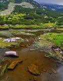 Ajardine com lago e grama verde na montanha Imagem de Stock