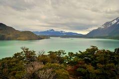 Ajardine com lago e montanhas em Torres del Paine Foto de Stock