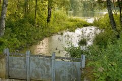 Ajardine com lago verde em um dia de verão ensolarado Foto de Stock