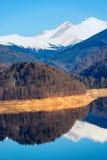 Ajardine com lago Vidraru da represa, em Romênia Fotos de Stock Royalty Free