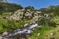 Ajardine com lagos Banski e pico pequeno de Polezhan, montanha de Pirin Fotografia de Stock