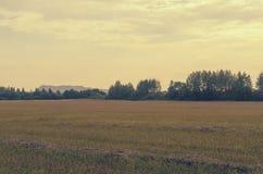 Ajardine com longe as montanhas e as plantas de sal em Soligorsk no Republic of Belarus Fotografia de Stock