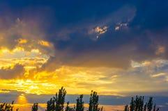 Ajardine com luz dramática Foto de Stock