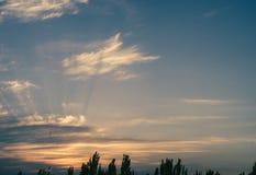 Ajardine com luz dramática - por do sol dourado bonito com céu e as nuvens saturados Foto de Stock