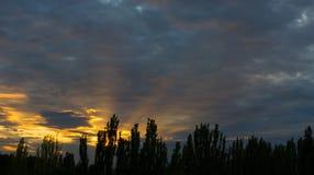 Ajardine com luz dramática - por do sol dourado bonito com céu e as nuvens saturados Fotos de Stock