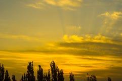 Ajardine com luz dramática - por do sol dourado bonito com sentado Foto de Stock