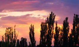 Ajardine com luz dramática - por do sol dourado bonito com sentado Imagens de Stock