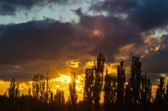 Ajardine com luz dramática - por do sol dourado bonito com sentado Fotos de Stock