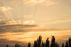 Ajardine com luz dramática - por do sol dourado bonito com sentado Imagem de Stock