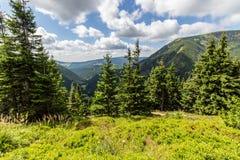 Ajardine com montanha e as nuvens agradáveis em Krkonose na república checa Foto de Stock