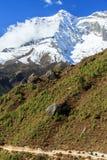 Ajardine com montanhas altas e caravana dos bois em Himalaya Fotografia de Stock