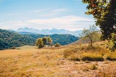 Ajardine com montanhas, céu azul e fieldLandscape com montanhas, céu azul, árvores e campo Fotografia de Stock