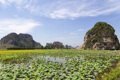 Ajardine com montanhas, campos do arroz e rio Fotografia de Stock Royalty Free
