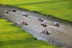 Ajardine com montanhas, campos do arroz e rio Imagens de Stock