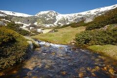 Ajardine com montanhas e neve em um dia ensolarado Imagem de Stock