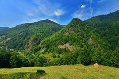 Ajardine com montanhas e prado em Valea Ierii Foto de Stock Royalty Free
