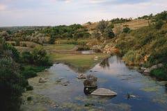 Ajardine com montanhas, floresta e um rio na parte dianteira Imagem de Stock Royalty Free