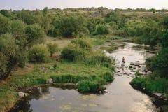 Ajardine com montanhas, floresta e um rio na parte dianteira Imagens de Stock