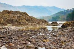Ajardine com montanhas, floresta e um rio na parte dianteira Cenário bonito Fotos de Stock
