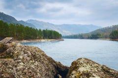 Ajardine com montanhas, floresta e um rio na parte dianteira Cenário bonito Fotografia de Stock